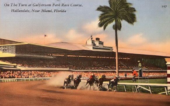 Race horses postcard2