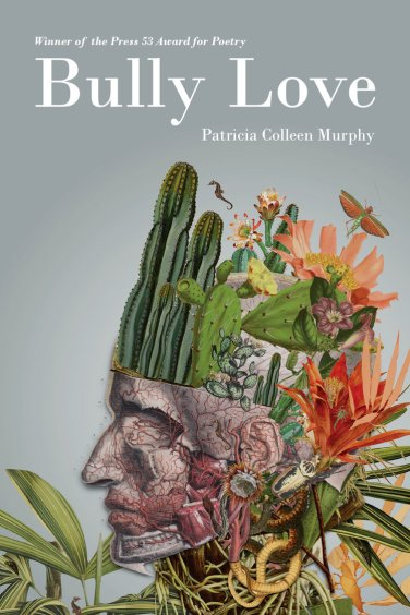 Bully Love by Patricia Colleen Murphy book cover